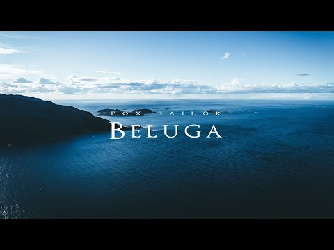 Fox Sailor - Beluga (Official Audio)