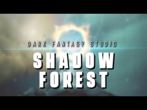 Dark fantasy studio- SHADOW FOREST (epic music)
