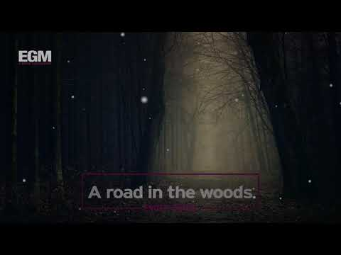 A road in the woods - Ender Güney (Official Audio)