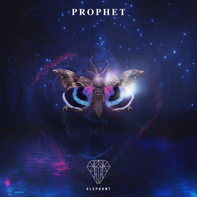 Nuevo álbum de Elephant Music: Prophet