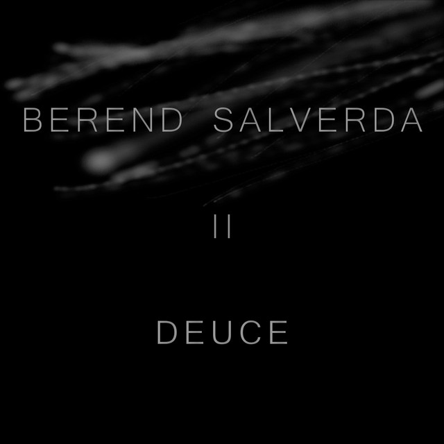 Nuevo álbum de Berend Salverda: Deuce